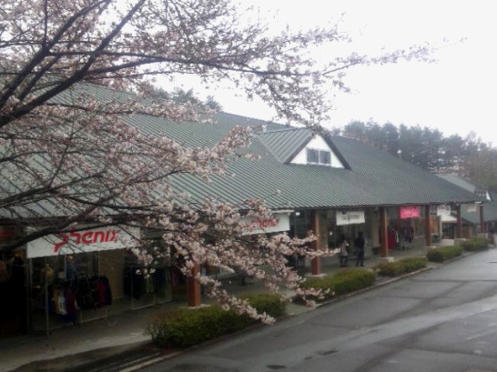 八ヶ岳アウトレットの桜